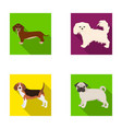 dog animal domestic and other web icon in flat vector image vector image