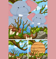 elephants in the forest and wooden sign vector image vector image