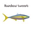 rainbow runner realistic vector image vector image