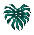 tropical plant leaves with nature style vector image vector image