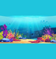 underwater world sea bottom coral reef seaweeds vector image