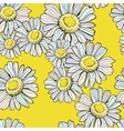 Beautiful chamomile pattern vector image