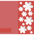 camomile coral background vector image