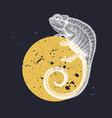 chameleon on moon design with hand draw vector image