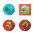 design of tree and forest icon set of tre vector image