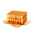 realistic honeycomb slice with liquid honey vector image vector image