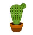 cute cactus icon vector image vector image