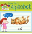 Flashcard letter C is for cat vector image vector image