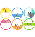 label design with wild animals vector image vector image