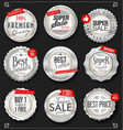 retro vintage silver badges and labels collection vector image vector image