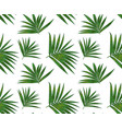 seamless pattern with kentia palm tropical branch vector image vector image