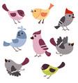 set of cute birds set of cute birds vector image vector image