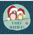 Two cute birds in santa clothes sitting on the vector image
