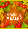 autumn sale promo with fall leaves berries vector image vector image