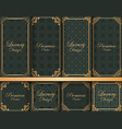 collection of ornate backgrounds with frames vector image vector image