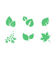 green leaves set parts of plants end trees of vector image vector image