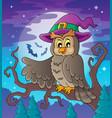 owl theme image 3 vector image