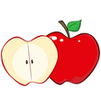 Whole And Cut Red Apple vector image vector image