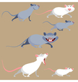 cartoon funny rats in various poses vector image vector image