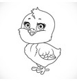 cute bachick outlined for coloring isolated on vector image vector image