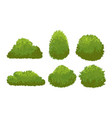 garden green bushes cartoon shrub and bush vector image