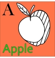 Letter A alphabet Coloring book apple vector image vector image