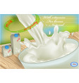 milk and package vector image
