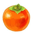 picture of fruit persimmon vector image vector image
