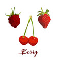 strawberry cherry ans raspberry isolated on white vector image vector image
