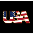 US inscription stylized flag colors in a golden vector image vector image