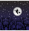 witch flying on a broom on a full moon vector image vector image