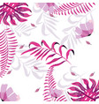 exotic flowers with beauty branches leaves vector image vector image