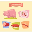 farm animal and products made out them pig vector image