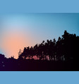 forest trees silhouette on sunset template vector image