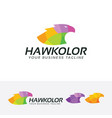 hawk color logo design vector image vector image