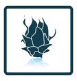 Icon of Dragon fruit vector image vector image