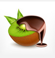 kiwi fruit with chocolate vector image vector image
