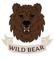 logo wild bear vector image vector image