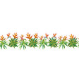 succulent cactus ribbon tropical plants flowers vector image