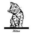 cute kitten sitting on line - cheerful kitty vector image vector image