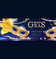 mask with feather for mardi gras carnival banner vector image vector image