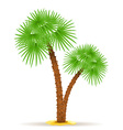 palm tree 05 vector image vector image
