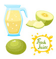 set of melon juice and melons isolated on vector image