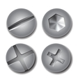 Set of screws and bolts on white background vector image