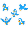cartoon blue bird collection set vector image