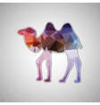 Creative concept camel icon isolated on vector image vector image