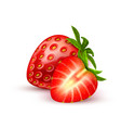 realistic detailed strawberry with slice vector image vector image