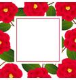 red camellia flower on white banner card