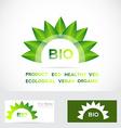 Bio organic flower leafs logo set vector image