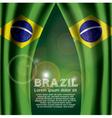 Brazil Flag Curtain vector image